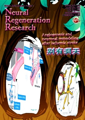Neural Regeneration Research杂志投稿